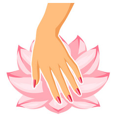 spa care for hands and nails vector image