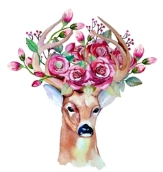 Watercolor hand drawn floral set with deer vector