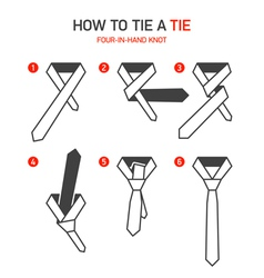 How to tie a tie instructions vector image