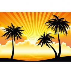 sunset coastline vector image