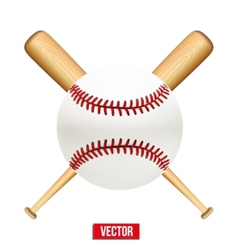 Baseball leather ball and wooden bats vector