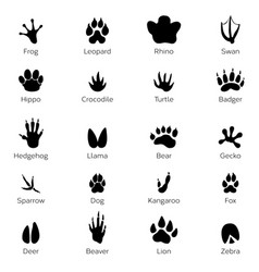 Black footprints shapes of animals elephant vector
