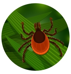 Mite in the tall green grass vector