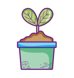 potted plant leaves natute growth foliage vector image