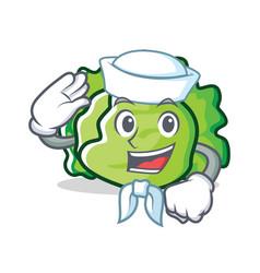 Sailor lettuce character cartoon style vector