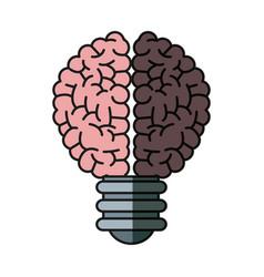 brain bulb inspiration creativity shadow vector image