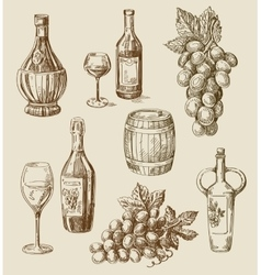 winedoodle vector image