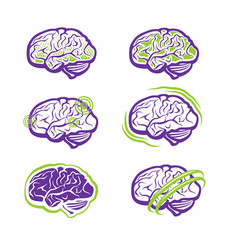 all about brain vector image