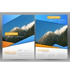 Annual Report and Presentation Template design vector image