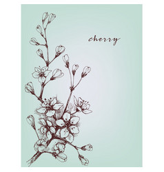 Artistic flowers cherry floral branch vector