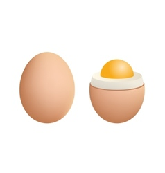 Broken Boiled Egg Isolated on White Background vector image