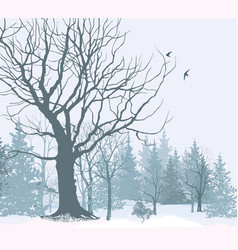 Christmas snow landscape snowy forest winter vector