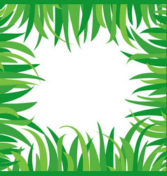 Decorative background with green grass isolated on vector