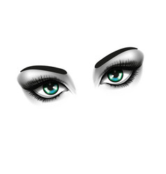 Eye fashion and beauty concept two eyes on white vector