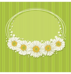 Floral invitation design vector image
