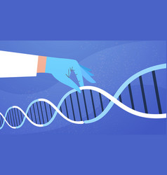 human hand holding genetic dna helical molecule vector image