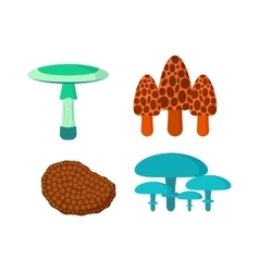 Mushrooms set different types vector image
