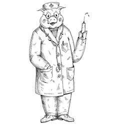 Pig dressed in doctor hat and gown holding vector