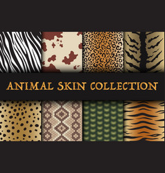 seamless animal skin patterns set safari textile vector image
