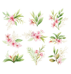 watercolor set bouquets pink flowers vector image