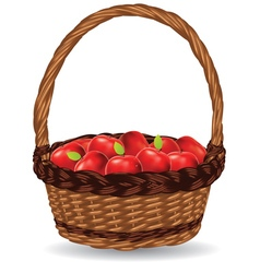 Basket of Red Apples3 vector image vector image