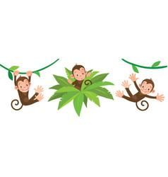 little funny monkeys on lians set vector image