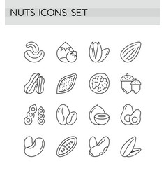 nuts icons line outline set vector image