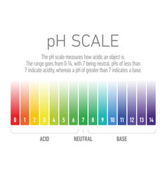 Ph value scale from acid to base solutions vector