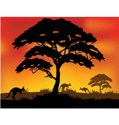 Safari background vector image