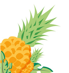 Set fresh pineapples fruits isolated icon vector