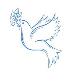 Dove Hand drawn Dove of Peace vector image vector image