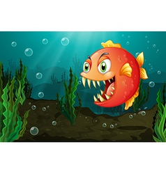 A piranha under the sea with seaweeds vector image vector image