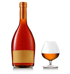 bottle of brandy with glass vector image