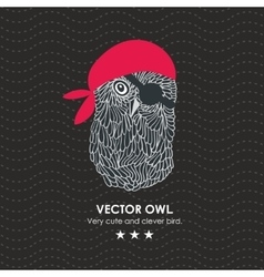 Cute little pirate owl vector