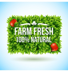 Farm fresh label made of leaves vector