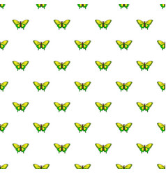 Goliath birdwing butterfly pattern seamless vector