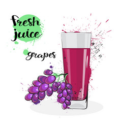 Grapes juice fresh hand drawn watercolor fruits vector