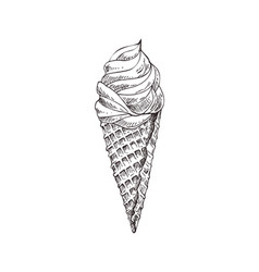 ice cream monochrome sketch vector image