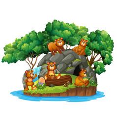 Many bears on island vector