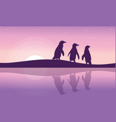 Penguin on the riverbank silhouette landscape vector