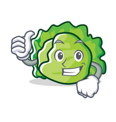 Thumbs up lettuce character cartoon style vector