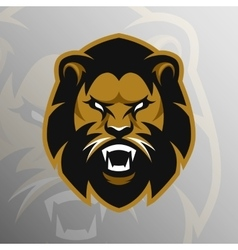 Angry Lion symbol emblem sport logo vector image vector image