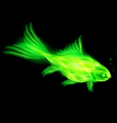 Fair Fish Green 01 vector image vector image
