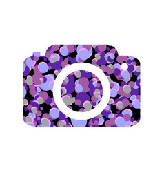 camera icon on white vector image
