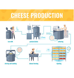 Cheese production cartoon infographics vector