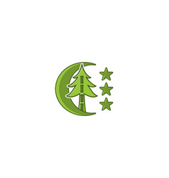 fir tree and star logo designs inspiration vector image