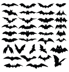 halloween bats silhouettes vector image