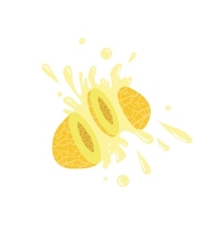 Melon Cut In The Air Splashing The Juice vector