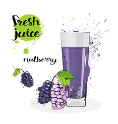 Mulberry juice fresh hand drawn watercolor fruits vector