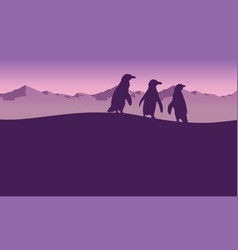 Penguin with mountain background landscape vector